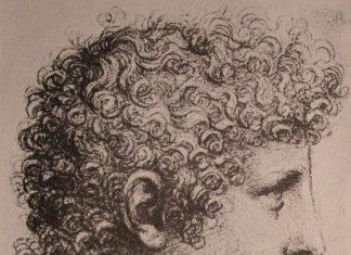 Leonardo-Salai
