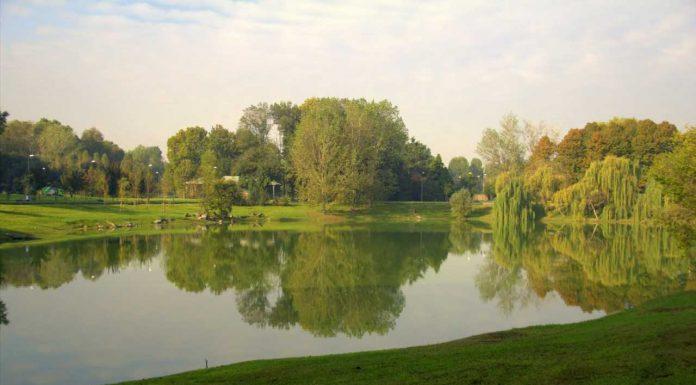 parchi milano zona 4 - ecco il parco forlanini