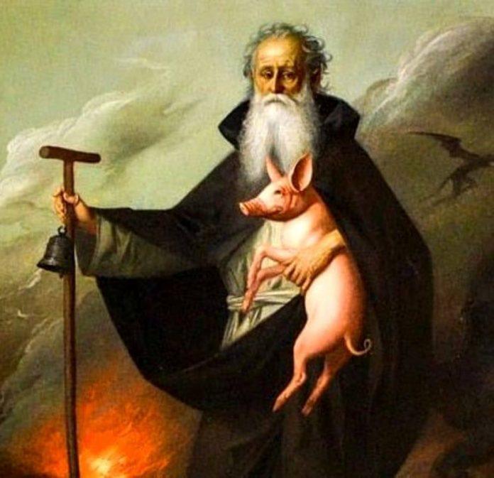 Sant Antòni del porscèll