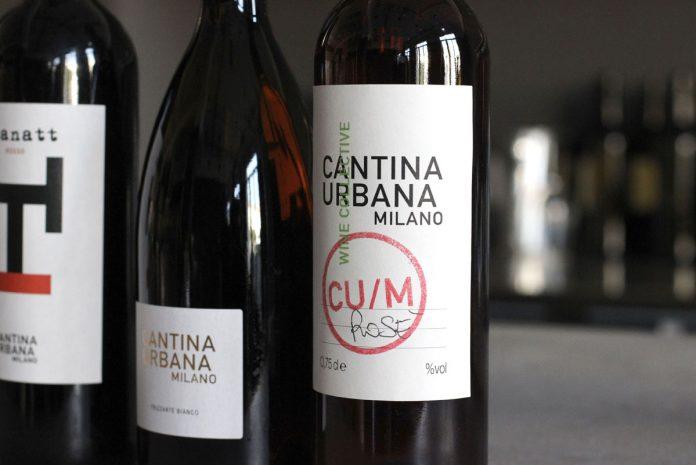 a Milano si fa anche il vino: cosa fare a Milano