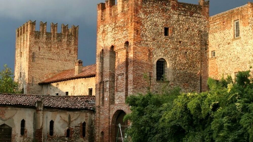 Castle Open Day