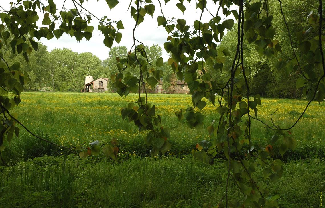 Parco Agricolo Ticinello - foto lifegate.it