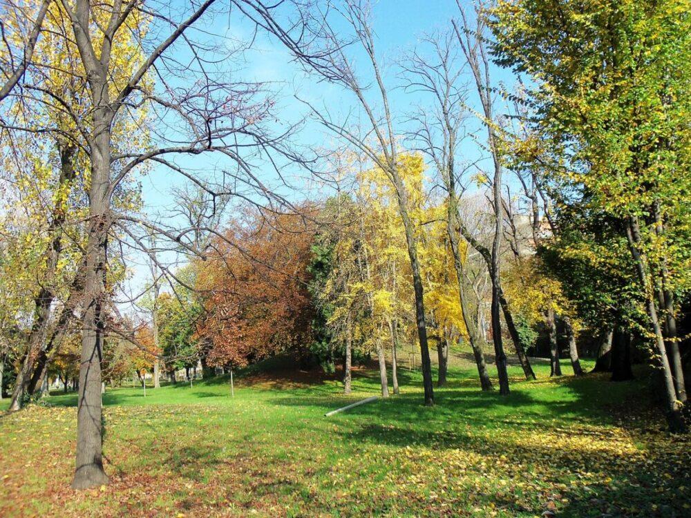 parco di villa finzi - foto di Yorick39